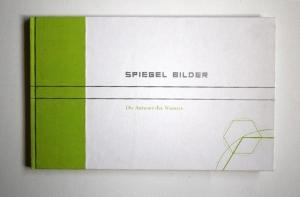 diplom_spiegelbilder28